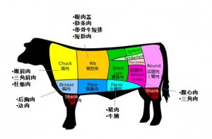 beef cuts Chinese